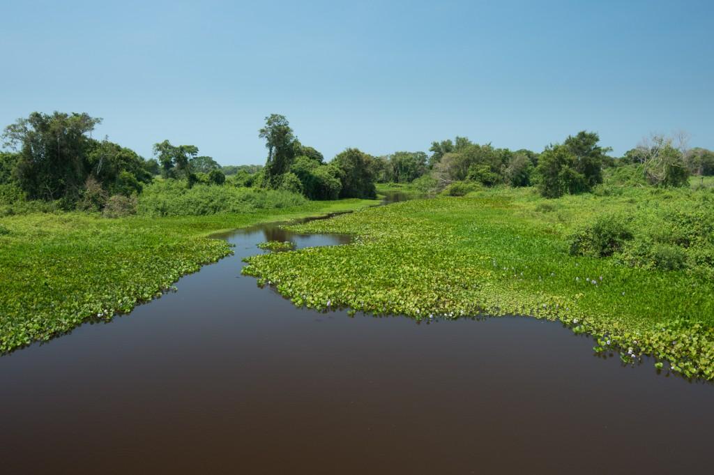 fotoresa Transpanthaneira road Pantanal Brasilien