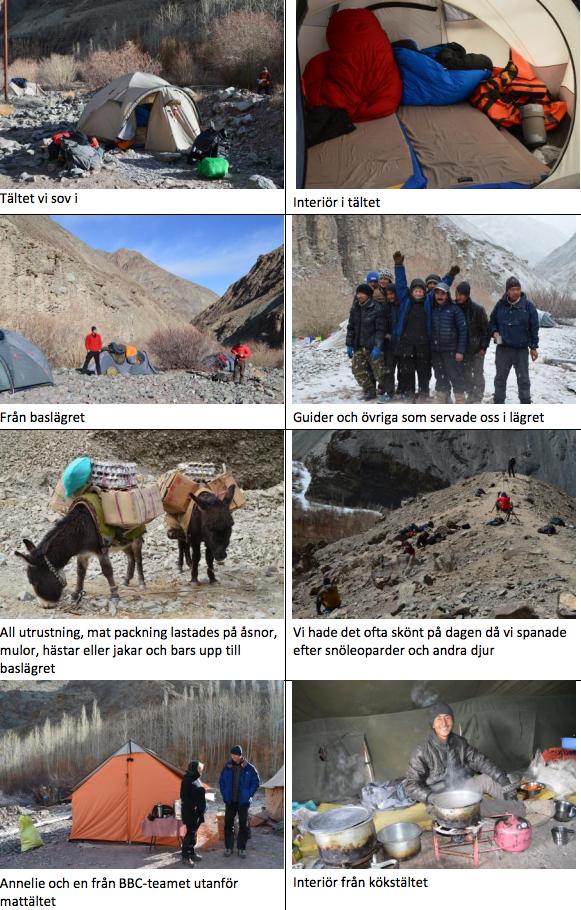 fotoresa snöleopard tält utrustning