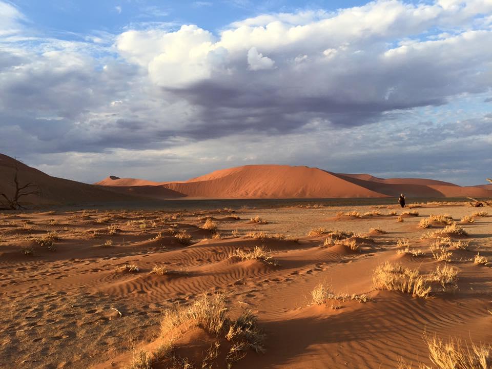 Ökenfotografering-Dune 45-Sossusvlei0507